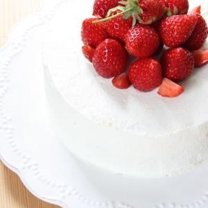 【 苺ケーキと裏庭の様子 】