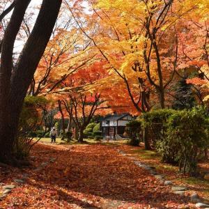千秋公園から手形陸橋、秋田駅東口へ