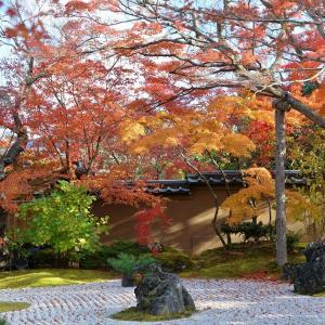 秋の松島へ