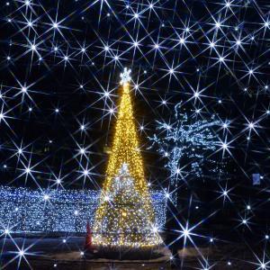 秋田大学とあきた光のファンタジーのイルミネーション