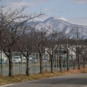 秋田駅西口から秋田大学、秋田高校へ