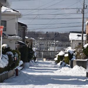 外旭川からユーランドホテルへ・雪と氷の千秋公園