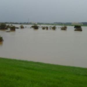 台風通過後2日の利根川