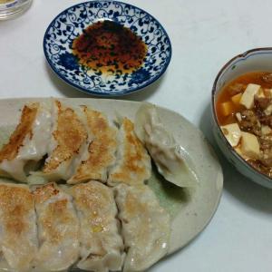 餃子 麻婆豆腐