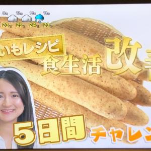 あさイチ、放送されました!レジスタントスターチを摂れる「長芋」を活用した簡単腸活レシピをご紹介!