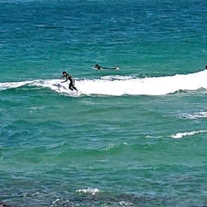 サーフィン!