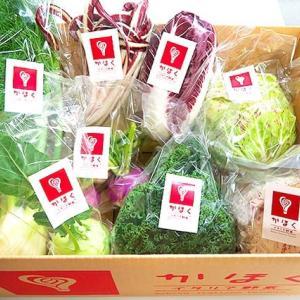 自慢のイタリア国産野菜産地の巻‼︎