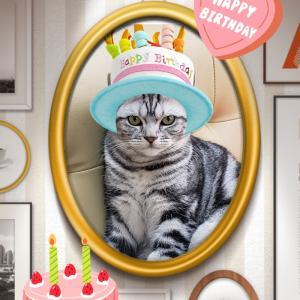 メロンちゃんお誕生日!