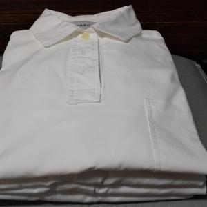 衣替えはしない。 白物の仕舞い洗いは着々と遂行中。