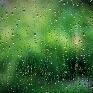 始まりは雨  :  913