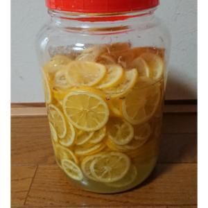 レモンの醗酵シロップ