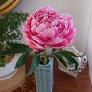 季節の花を飾る楽しみ♡暮らしの楽しみ