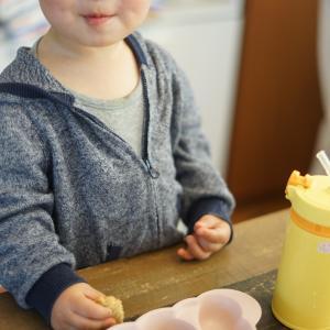 結局、子どもに牛乳はどうなのか?