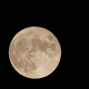まだまだ満月エネルギーは降り注いでいます♡我が家の中秋の名月。