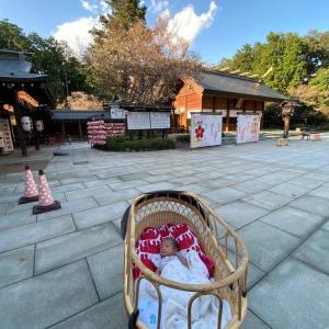 乳母車と神社の調和