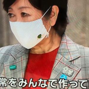 小池百合子都知事、マスクのマークは何?。