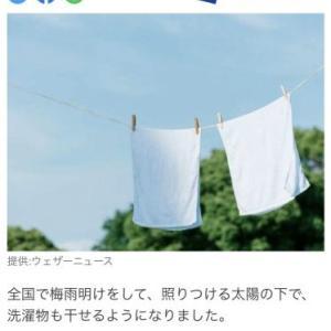 タオルは、天日干しより陰干しが良い理由知っていますか?