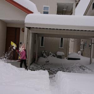 大雪になって起こった出来事での娘の気持ち♪