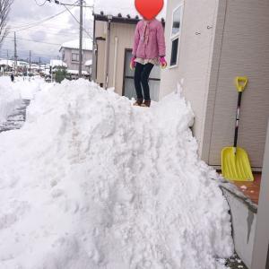 新潟で車ナシ生活。大荒れの天気の日に思うこと。