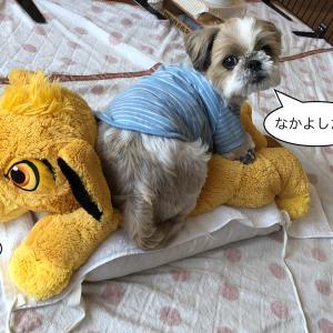 """""""リモコンぺたり と 鼻セレブ"""""""