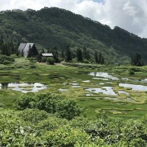 笹ヶ峰⇔火打山ピストン