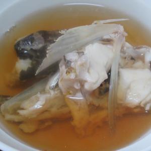 マゴチのアラ汁