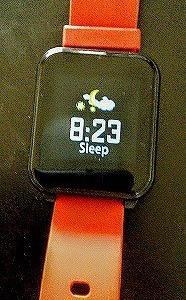 レム睡眠とノンレム睡眠!・・・しっとり雨だから・・・