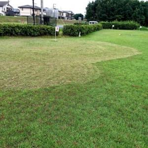 速野グラウンドゴルフ場の整備日・中野、木浜地区担当
