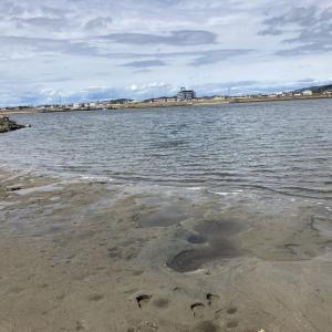 9/13吉井川河口でハゼ釣り その記録 まだちょっと小さいです