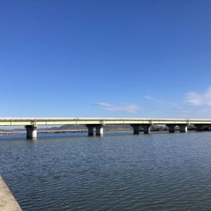岡山の百間川でハゼ釣り狙いと新岡山港に釣りに行った話11月末