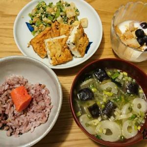 【ダイエット記録】月曜断食☆お休み中