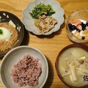 【ダイエットお休み中】食事記録のみ