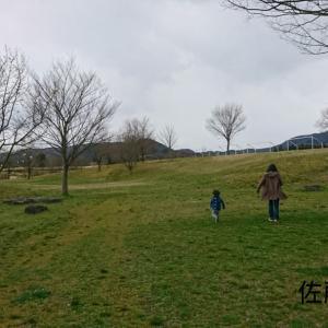 広い公園で走り回る!