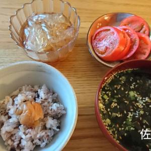食事記録【5月18日】