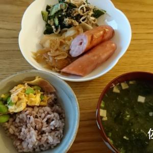 食事記録【6月19日】