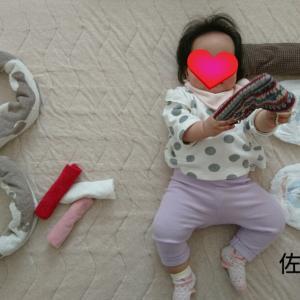 【娘成長記録】生後8ヶ月