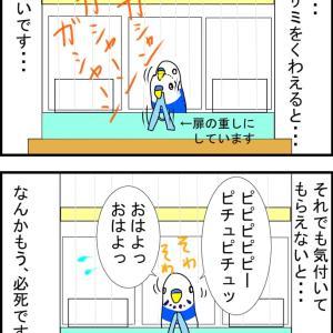 ピヨちゃん催促