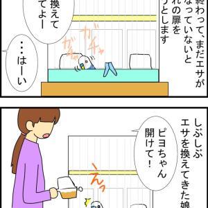 賢いピヨちゃん