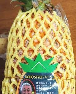 台湾パイナップル買ったよ~