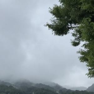 聴こえてくるのは…雨の降る音ばかり…(As tears go byより)
