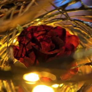 ホラー・レストラン「パークサイド・グリル~呪われた薔薇の宴~」体験レポ