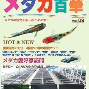 メダカ百華Vol.9