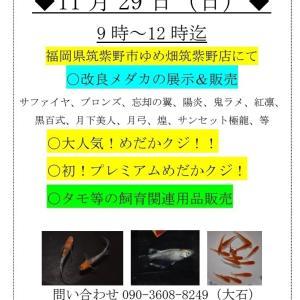 11月29日福岡県筑紫野市ゆめ畑さんでのイベント詳細