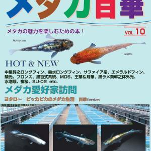 YUKOのプレ企画とメダカ百華Vol.10