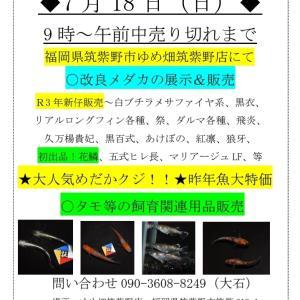 7月18日はイベント三昧!!