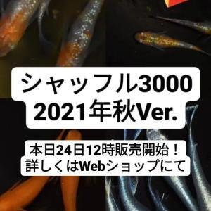 今日はシャッフル3000販売いたします!