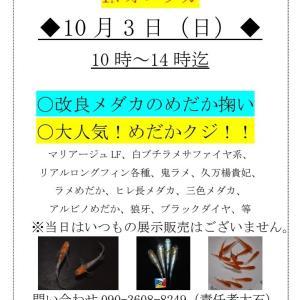 10月のイベントのお知らせ!!