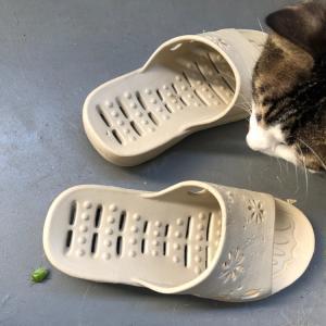 猫に噛まれたら