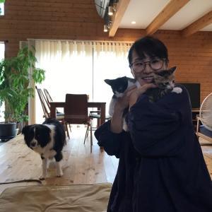 ブログ:八坊&きみ子、幸せの新しいお家へ♪
