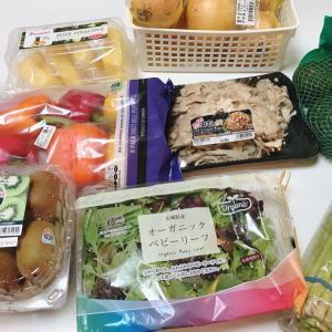 【コストコ購入品】野菜&果物編のYouTube UPしました♡